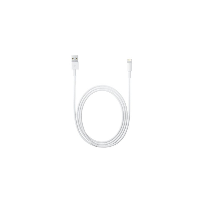 Kabel Lightning do USB 1m - iPad