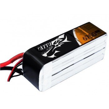 LiPo Battery 4S 6 750 25C TATTU